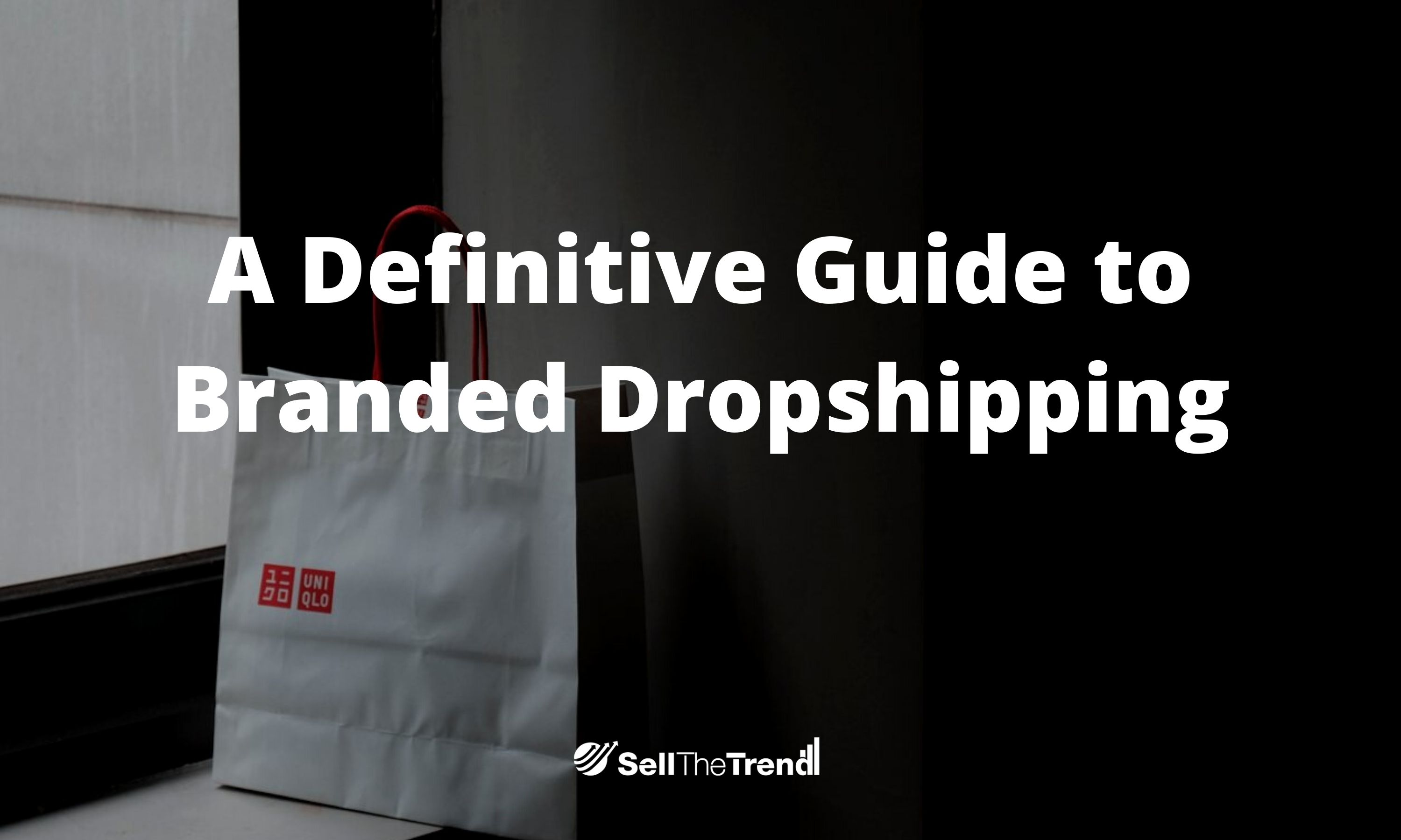 A definitive Guide to Branded Dropshipping