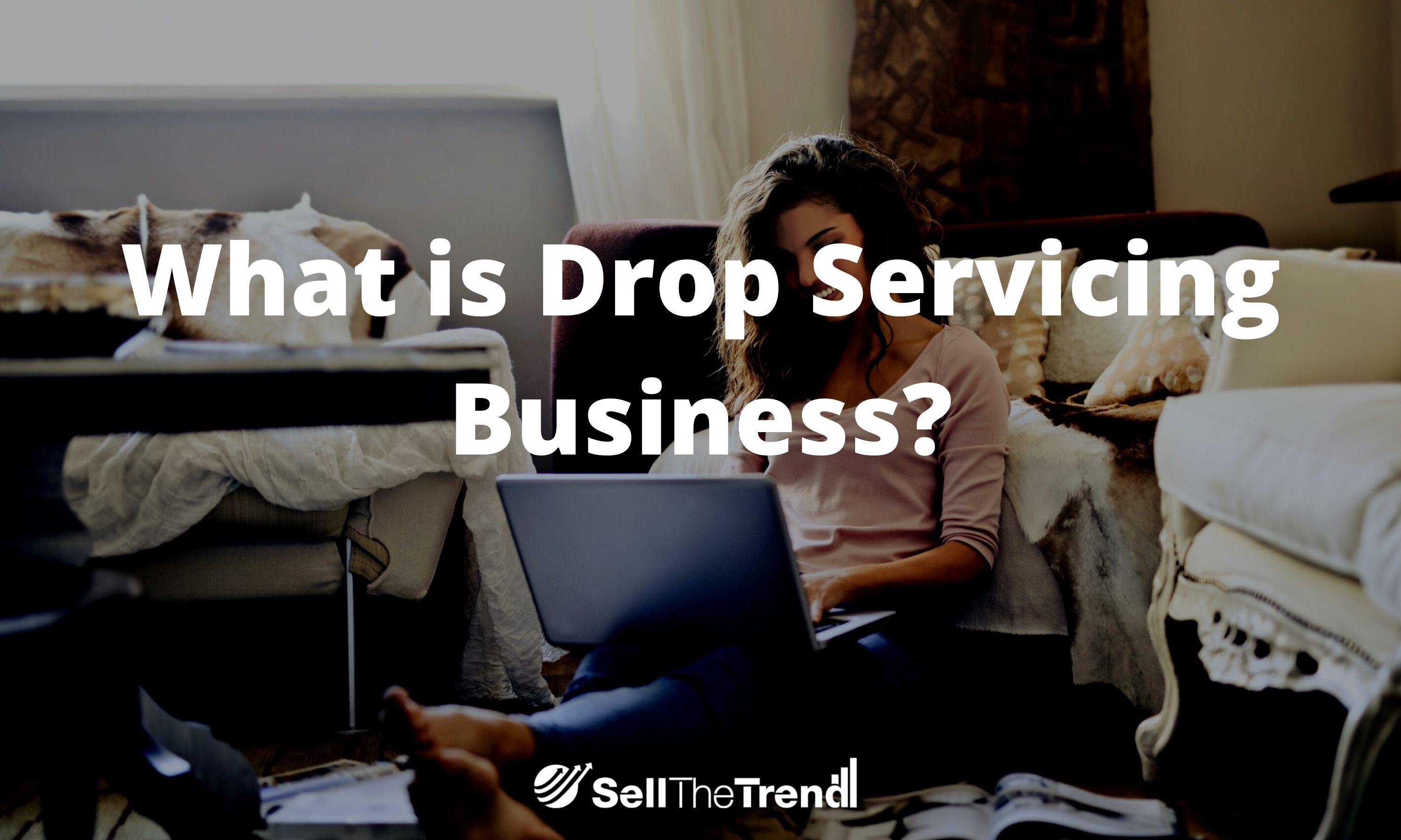 What is drop servicing business?