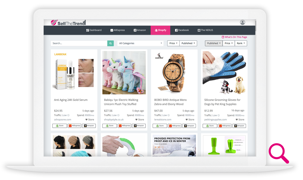 A I  Dropshipping Product Discovery | Find it  Sell it  Ship